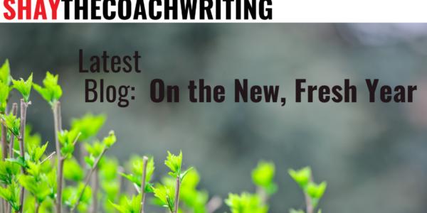 Fresh new year blog